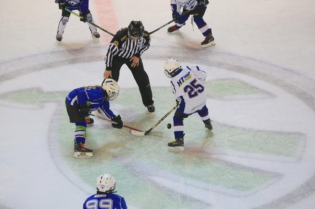ledni hokej další