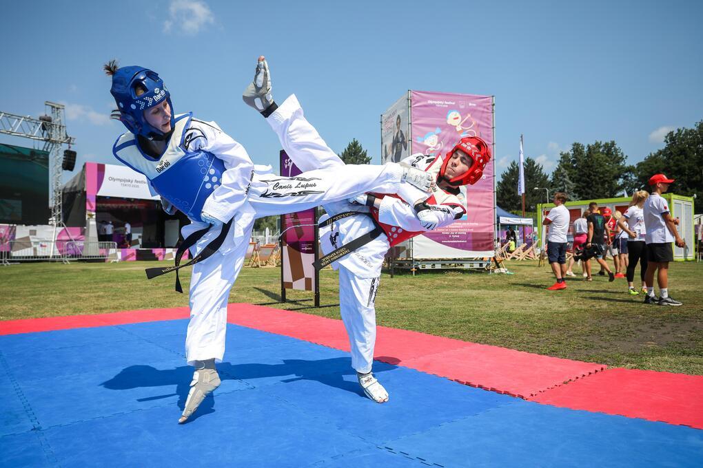 taekwondoo